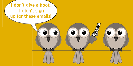 spam complaints owls